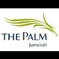 palm-icon